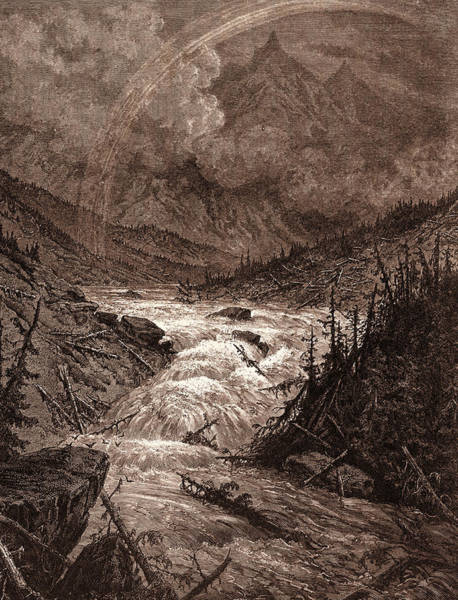 Dor Drawing - The Tributaries Of The Mississippi by Litz Collection