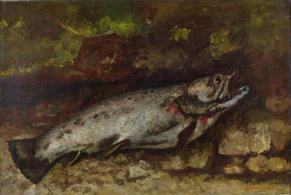 Bleeding Wall Art - Painting - The Trout, 1873  by Gustave Courbet