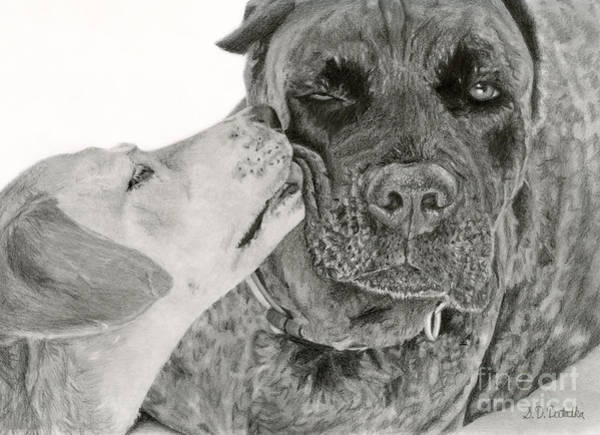 Wall Art - Drawing - The Unconditional Love Of Dogs by Sarah Batalka