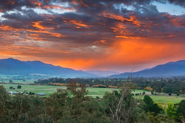 Photograph - The Valley Red by Mark Lucey