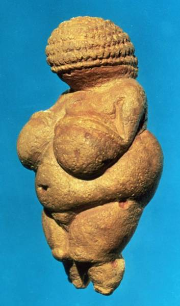 Founded Photograph - The Venus Of Willendorf, Side View Of Female Figurine, Gravettian Culture, Upper Palaeolithic by .