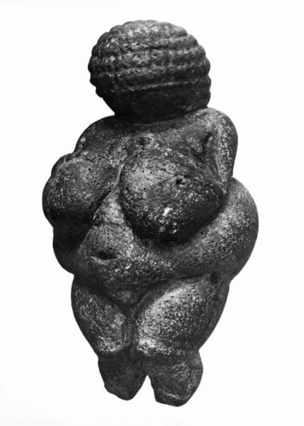 Venus Photograph - The Venus Of Willendorf, Side View Of Female Figurine, Gravettian Culture, Upper Paleolithic by Prehistoric