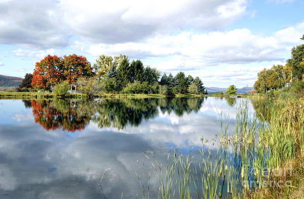 Photograph - The View Across The Lake by David Birchall