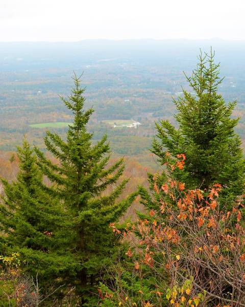 Photograph - The View From Mount Monadnock by Toby McGuire