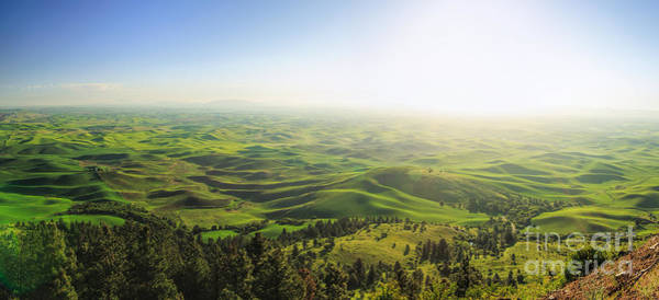 Photograph - The View - Palouse Country by Beve Brown-Clark Photography