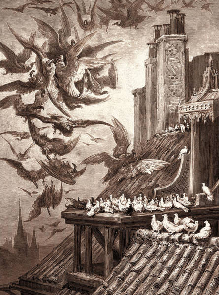 Dor Drawing - The Vultures And The Pigeons by Litz Collection