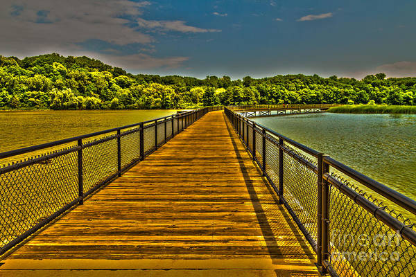 Photograph - The Walkway by William Norton