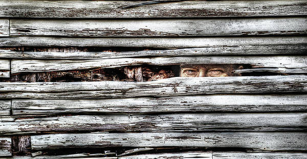 Photograph - The Watcher by Rick Mosher