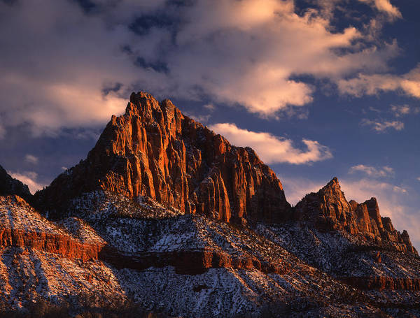Photograph - The Watchman by Ray Mathis