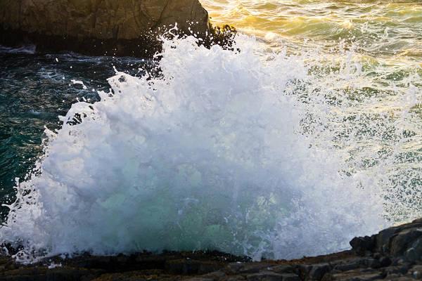 Photograph - The Wave by Priya Ghose