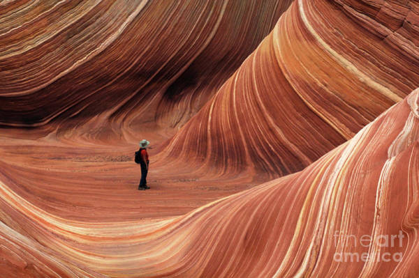 Sculpting Wall Art - Photograph - The Wave Seeking Enlightenment by Bob Christopher