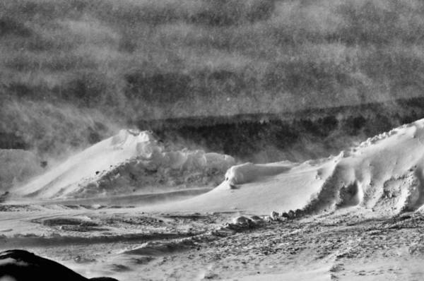 Snowstorm Wall Art - Photograph - The Way Life Should Be by Susan Capuano
