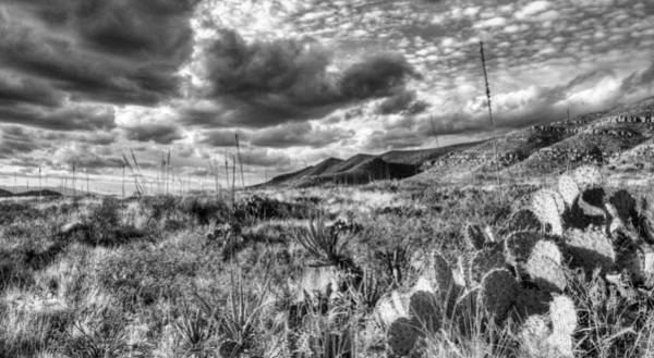 Wall Art - Photograph - The West Texas Landscape by JC Findley