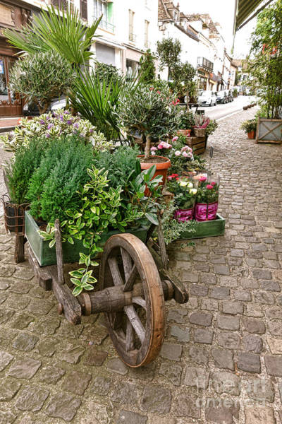 Wall Art - Photograph - The Wheelbarrow At The Flower Shop by Olivier Le Queinec