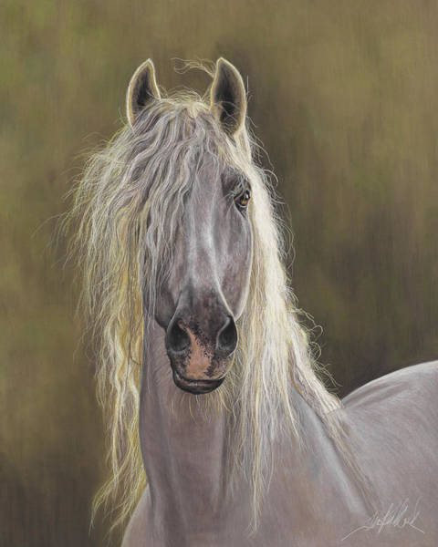 Painting - The White Horse by Terry Kirkland Cook