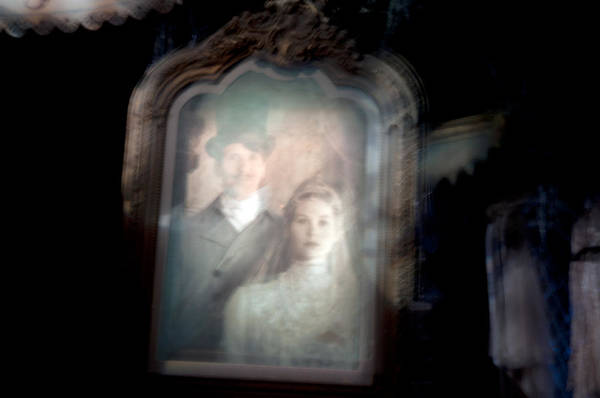 Wall Art - Photograph - The Widow by Ryan Crane