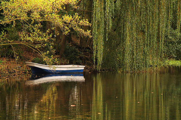 Photograph - The Willow Tree And Boat by Sarah Broadmeadow-Thomas