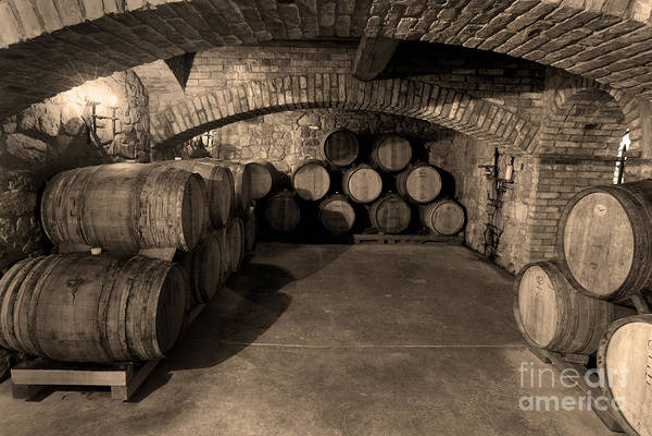 Wine Barrel Wall Art - Photograph - The Wine Cave by Jon Neidert