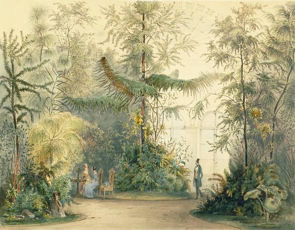 Austrian Painting - The Winter Garden Of The Hofburg by Austrian School