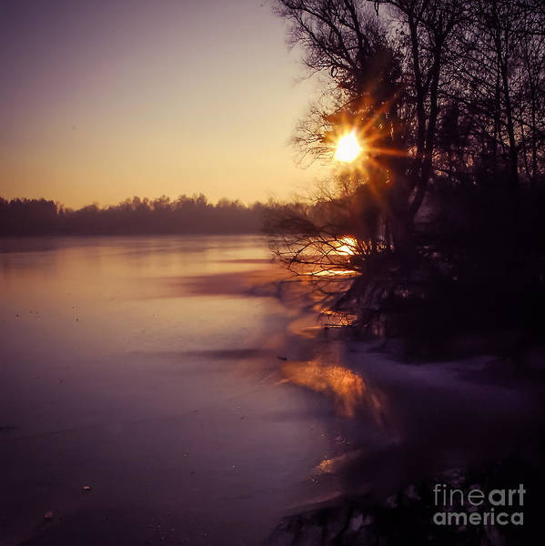Photograph - The Wintersun by Hannes Cmarits