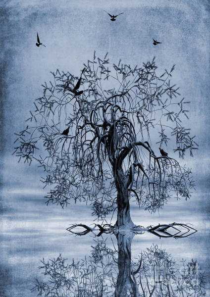 Wall Art - Painting - The Wishing Tree Cyanotype by John Edwards