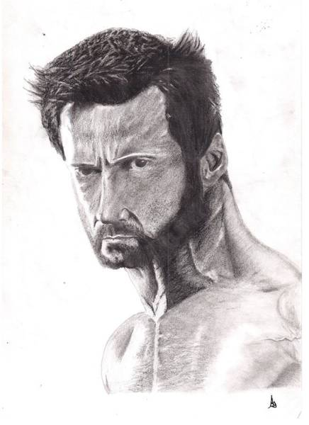 Wolverines Drawing - The Wolverine by Ajay G