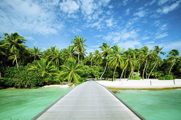 Snorkeling Photograph - The Wooden Bridge Of Maldives Beach by Phototalk