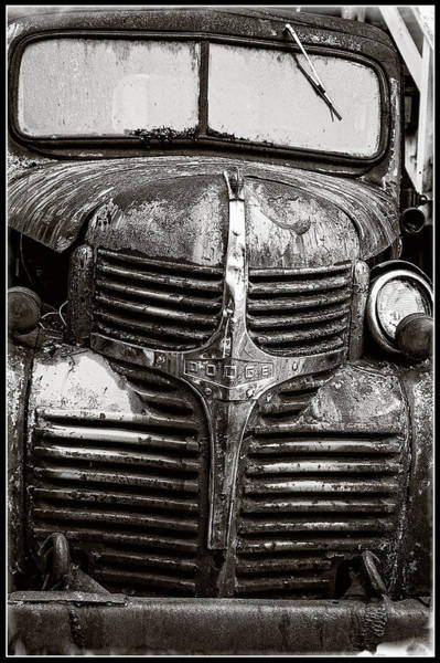 Photograph - The Old Dodge Truck by Roxy Hurtubise
