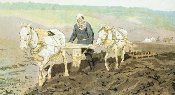 Ploughing Painting - The Writer Lev Nikolaevich Tolstoy by Ilya Efimovich Repin