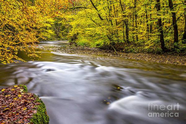 Photograph - The Wutach Gorge by Bernd Laeschke