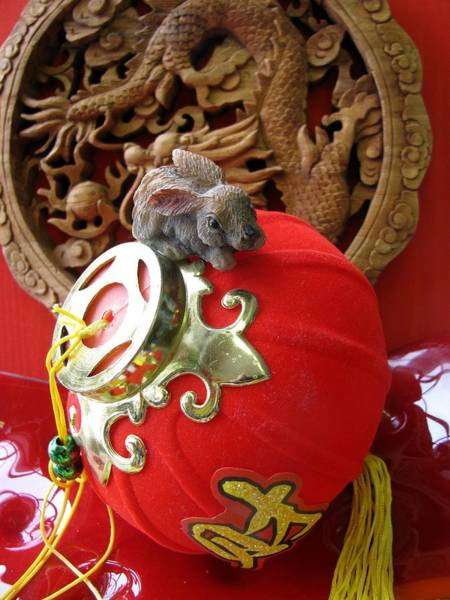 Chinese New Year Rabbit Wall Art - Photograph - The Year Of The Rabbit by Alfred Ng