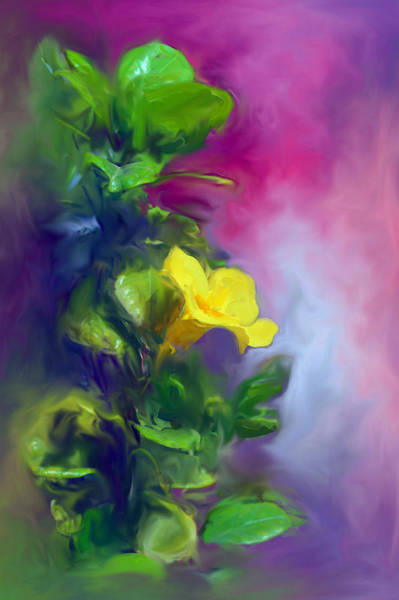 Usha Painting - The Yellow Mandevilla Flower 2 by Usha Shantharam