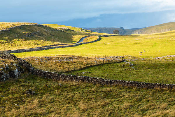 Photograph - The Yorkshire Dales by Susan Leonard