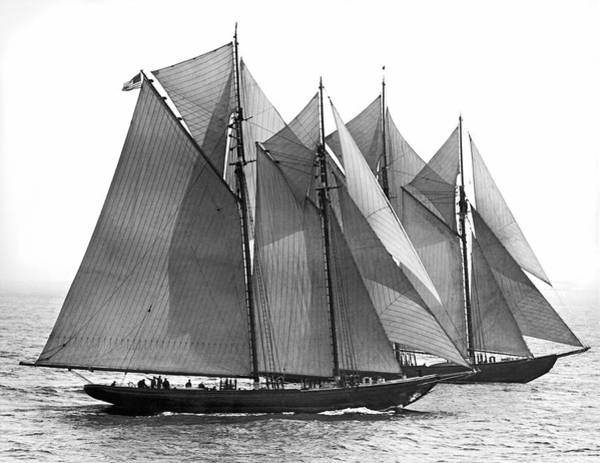 Pursuit Photograph - Thebaud Passes Bluenose by Underwood Archives