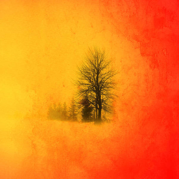 Mystic Digital Art - Thee Tree  by Mark Ashkenazi