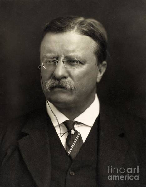 Historical Figure Painting - Theodore Roosevelt by Unknown