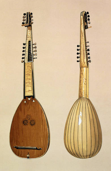 Back Drawing - Theorbo, Made By Giovanni Krebar by Alfred James Hipkins