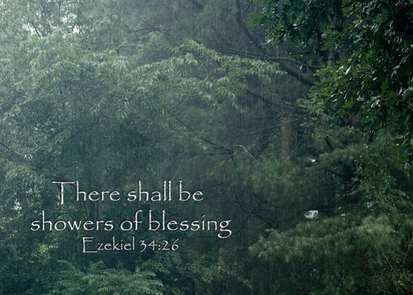 Photograph - There Shall Be Showers Of Blessing by Denise Beverly