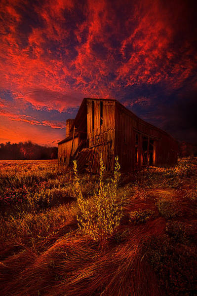 Photograph - There Was A Time by Phil Koch