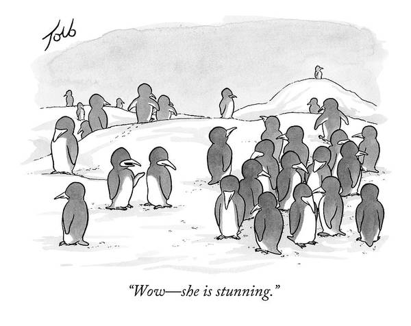 Good News Drawing - There's A Group Of Penguins And Two Penguins by Tom Toro