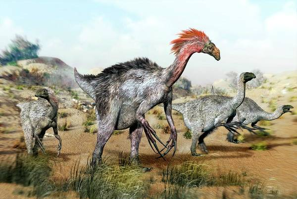 Wall Art - Photograph - Therizinosaurus Dinosuars by Jose Antonio PeÑas