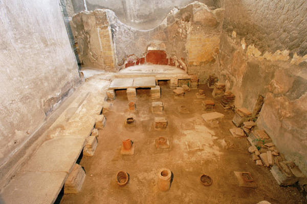 Wall Art - Photograph - Thermal Baths Of Roman Villa by Pasquale Sorrentino/science Photo Library