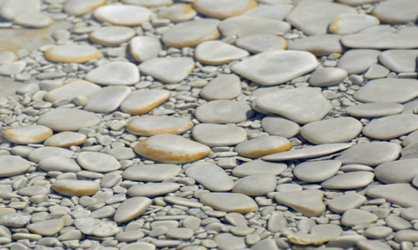 Photograph - Thermal Rocks In Yellowstone National Park by Bruce Gourley