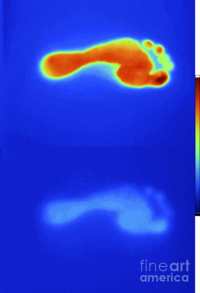 Infrared Radiation Photograph - Thermal Shadow Fading by GIPhotoStock
