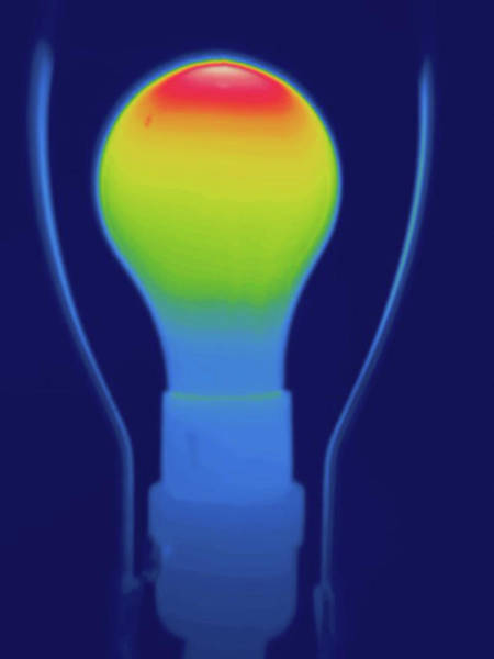 Wall Art - Photograph - Thermogram Incandescent Light Bulb by Science Stock Photography/science Photo Library