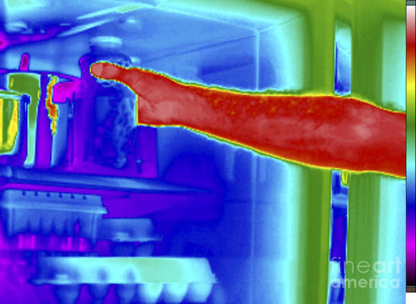 Infrared Radiation Photograph - Thermogram Of Hand In Refrigerator by GIPhotoStock