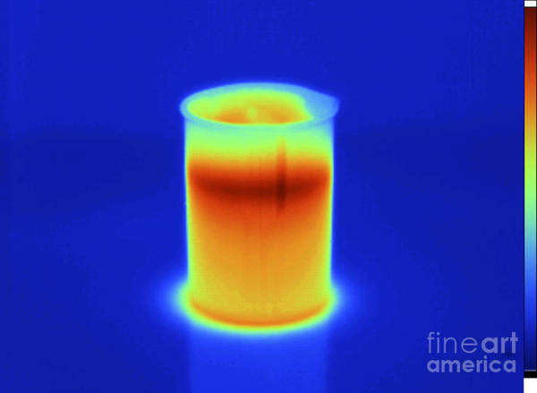 Infrared Radiation Photograph - Thermogram Of Hot Water In Beaker by GIPhotoStock