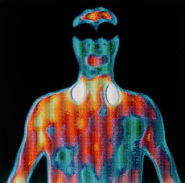 Infrared Radiation Photograph - Thermogram Of Man by Alfred Pasieka/science Photo Library