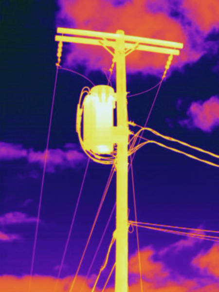 Thermal Photograph - Thermogram Telephone Pole by Science Stock Photography/science Photo Library