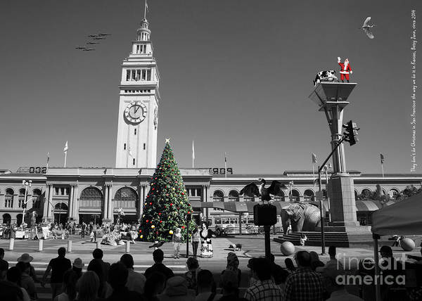 Photograph - They Dont Do Christmas In San Francisco The Way We Do It In Kansas Betsy Jane Dsc1745 Bw by Wingsdomain Art and Photography